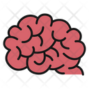 Brain Idea Creativity Icon