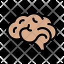 Mind Head Medical Icon