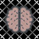 Brain Thinking Idea Icon