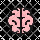 Brain Cognitive Knowledge Icon