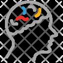 Brain Human Head Icon