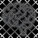 Brain Anatomy Human Icon