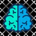 Brain Intelligence Mind Icon