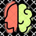 Brain And Head Icon