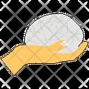 Brain Care Icon