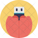 Brain Flash Drive Icon