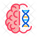 Brain Molecule Science Icon