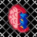 Brain Molecule Science Icon