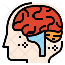 Brain Neurology Neurotransmitter Icon