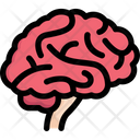 Brain Side Icon