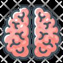 Brainstorm Brain Idea Icon
