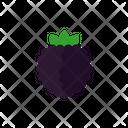 Brambleberry Icon