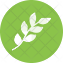 Branch Leaf Leaves Icon