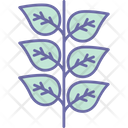 Branch Olive Peace Icon