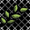 Branch Leaf Leaves Icon