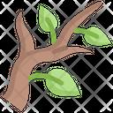 Branch Leaf Tree Icon