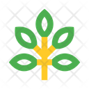 Branch Leaves Icon