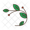 Branch Leafage Berries Icon