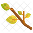 Branch Leaves Green Icon