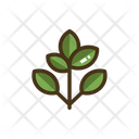 Branch Leaves Tree Icon