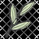 Branch Leaf Plant Icon