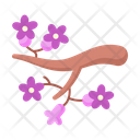 Branch Tree Flower Icon
