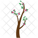 Branch Tree Flowers Icon