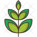 Branch Leafage Nature Icon