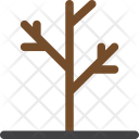 Nature Forest Plant Icon