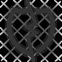 Break Shield Icon