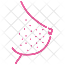 Breast-cancer Symptoms Icon