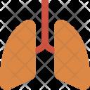 Breath Health Care Icon
