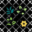 Breeding Icon