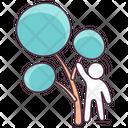 Broadleaf Tree Icon