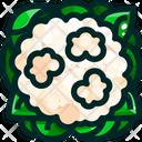 Broccoflower Icon