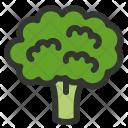 Broccoli Cauliflower Icon