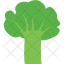 Broccoli Healthy Food Organic Icon