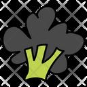 Broccoli Vegetable Healthy Food Icon