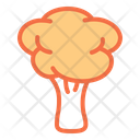 Broccoli Food Pizza Ingredients Icon