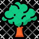 Spring Broccoli Tree Icon