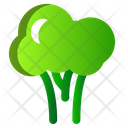 Broccoli Vegetables Spring Icon