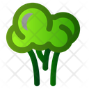 Broccoli Vegetables Spring Icon