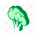 Artichoke Avocado Banana Icon