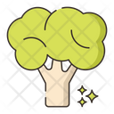 Broccoli Vegatable Vegan Icon