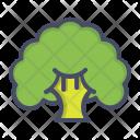 Broccoli Vegetable Fibre Icon