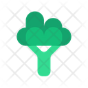 Broccoli Fresh Vegetables Icon