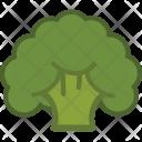 Broccoli Fresh Veggie Icon