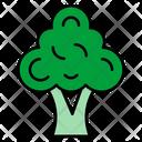 Broccoli Vegetables Food Icon