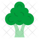 Broccoli Vegetables Food Icon