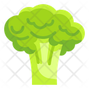 Broccoli Fruit Food Icon